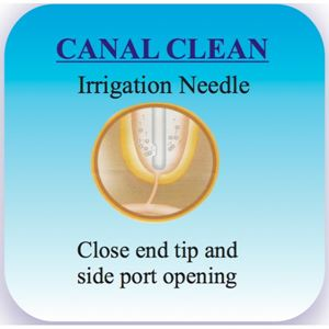 Picture of Ammdent Canal Clean Irrigation Needles